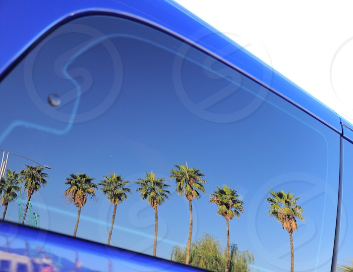 black car window with reflection of green palm trees photo