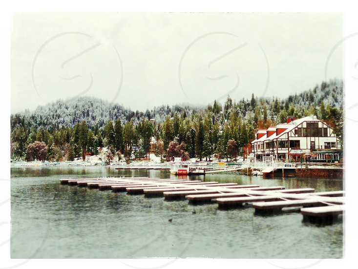 lake view with wood floating photo