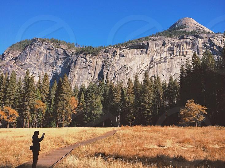 Thankful for nature walks photo