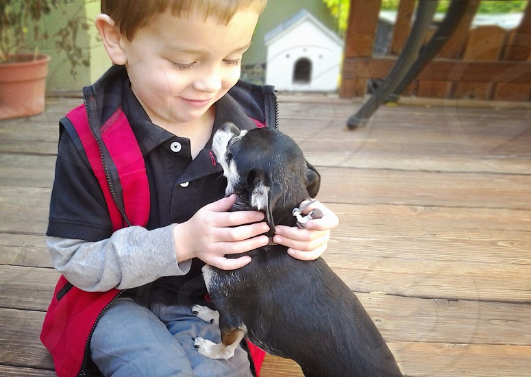 boy dog kid child pet owner doghouse deck cuddling love eye contact cute petting chihuahua photo