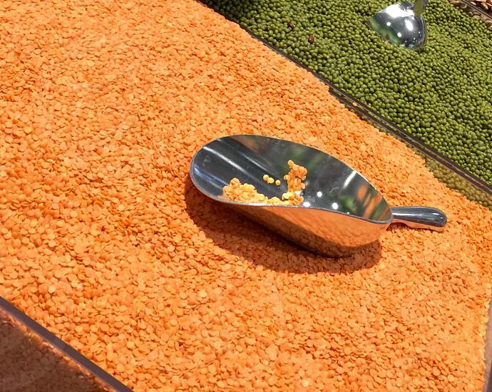 silver scoop in grain photo
