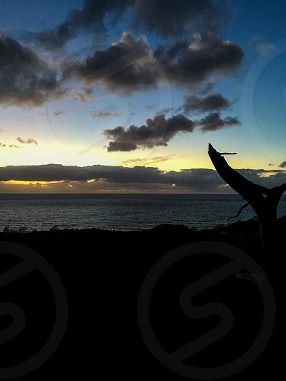Sunset La jolla Torrey Pines hiking trail photo