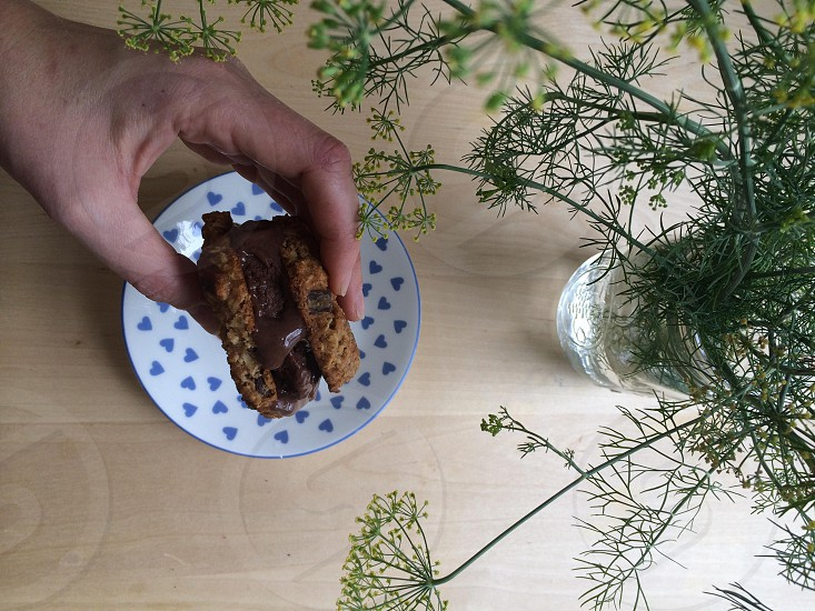 homemade oatmeal chocolate chip + cocoa-almond ice cream sandwich / fresh dill from the garden photo