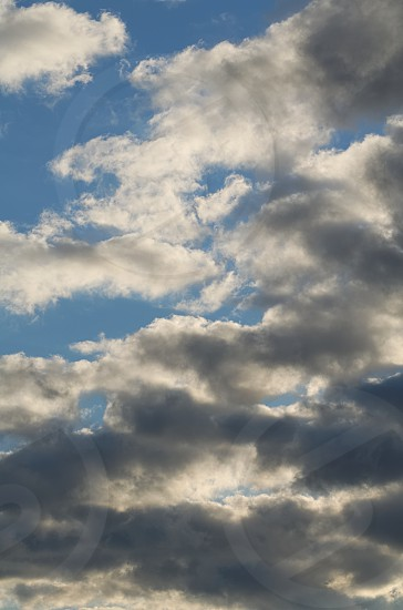 Grey Clouds on the Blue Sky Vertical Cloudscape photo
