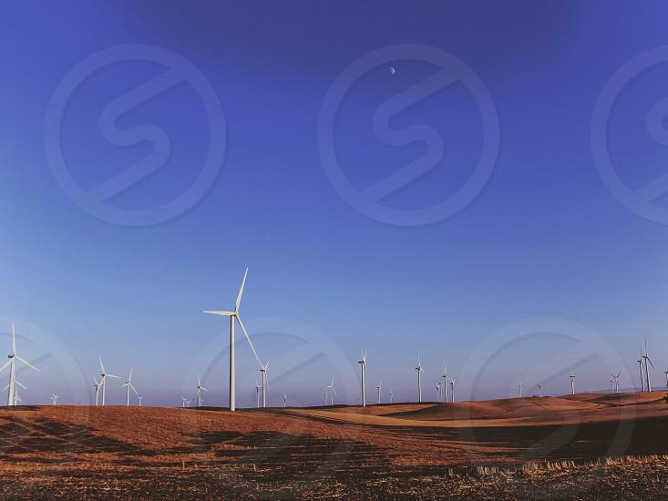 white wind turbines in a brown field under a blue sky photo