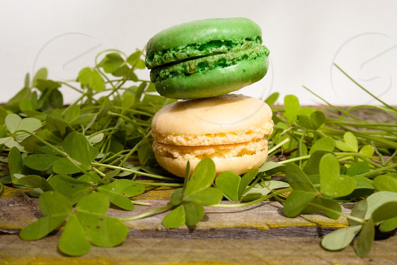 Green and white macaroons on clover on old wood table photo