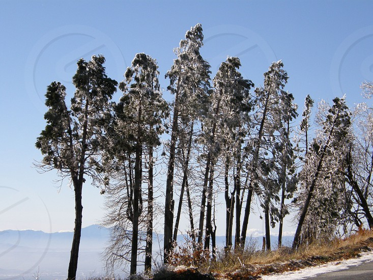 Mountains edge photo