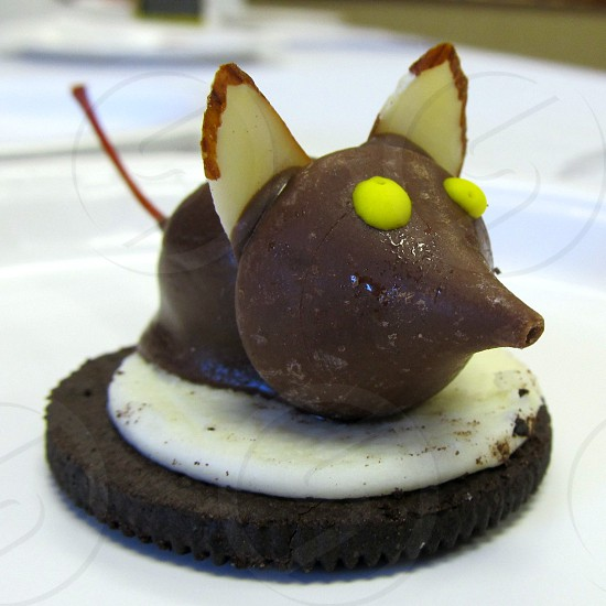 Mouse made from bottom half of Oreo cookie Hershey's kiss almonds and chocolate covered cherry photo