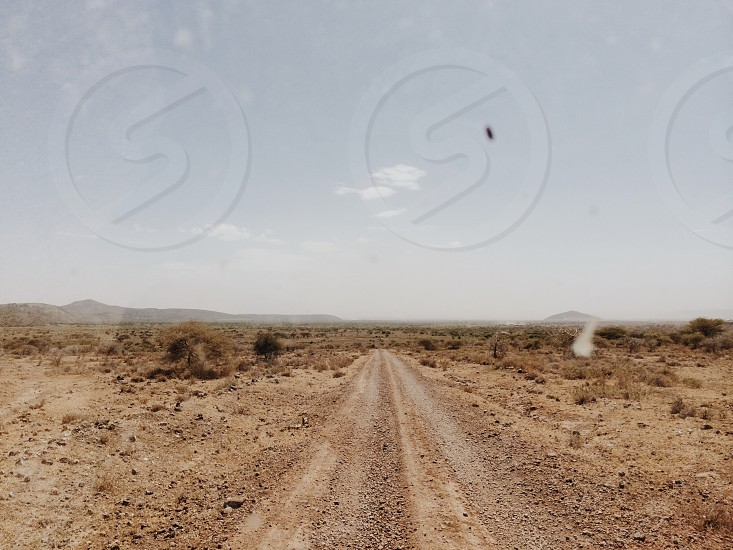 desert pathway photo