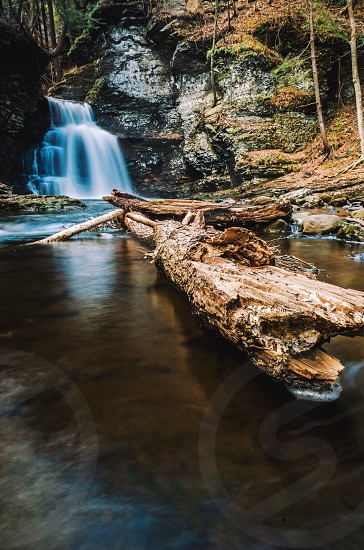 driftwood on clear stream by cascading waterfalls during daytime photo