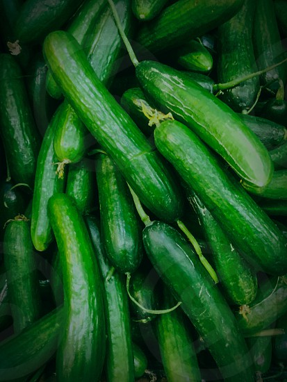 bunch of cucumber vegetables photo