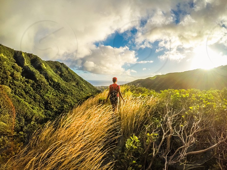 Summer time hiking in Hawaii sunny day photo