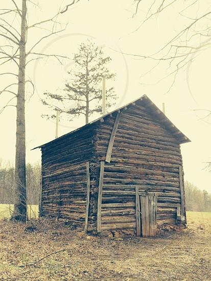 Smoking Tobacco Log Cabin photo