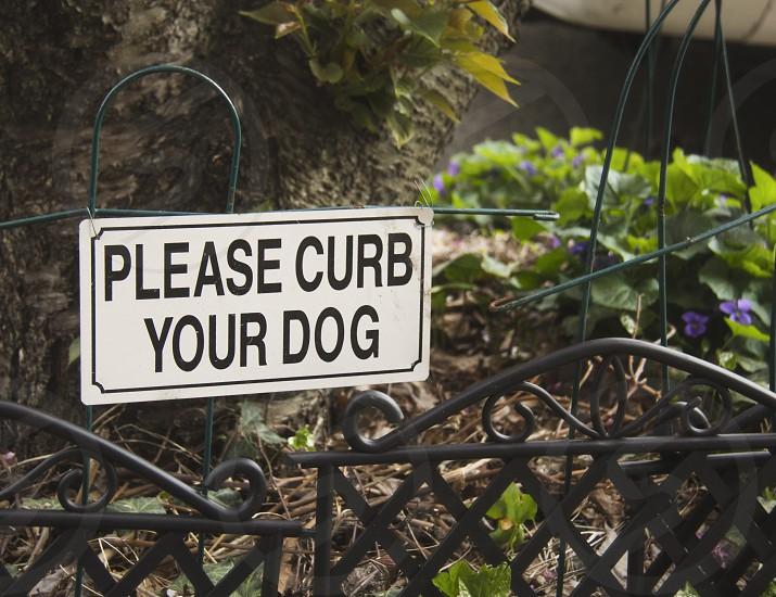 """Brooklyn slang for """"move your dog away from my plants and have it piss on the curb"""" photo"""