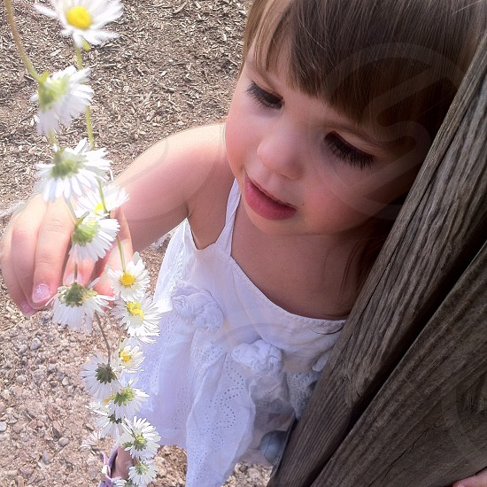 Daughter looking rather taken by a daisy chain. photo