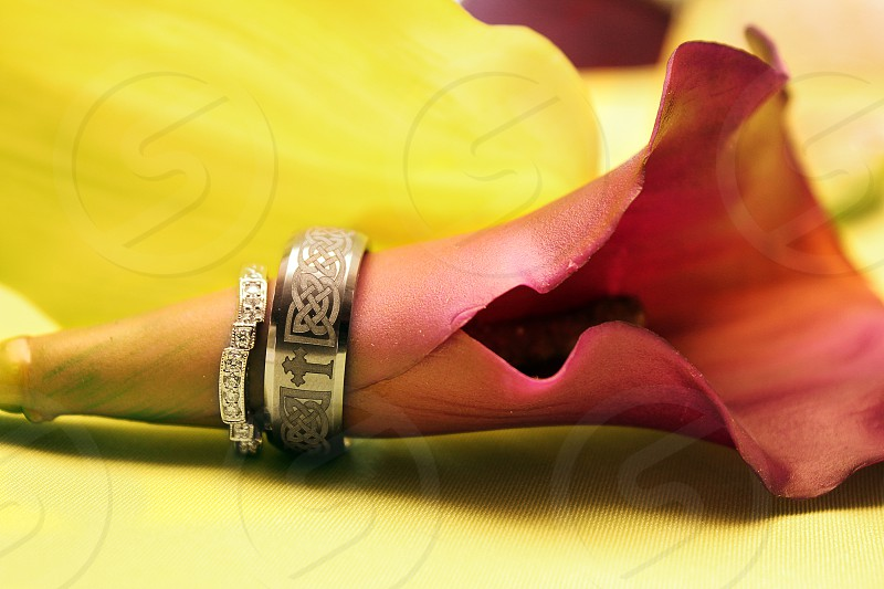 Wedding rings on a flower photo