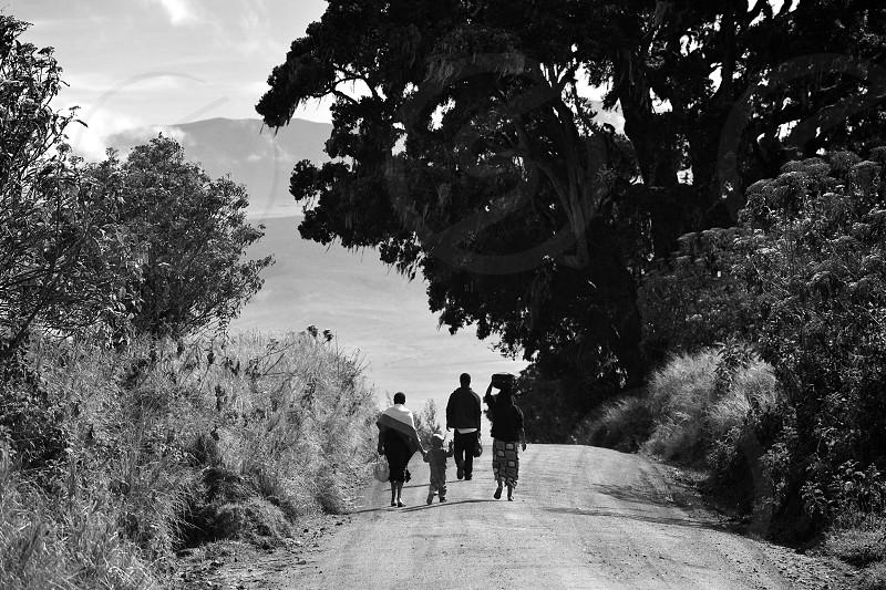 Morning family walk in Tanzania photo