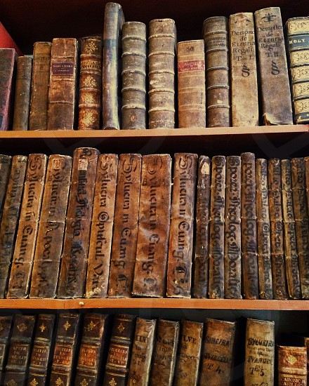 books on brown wooden shelves photo
