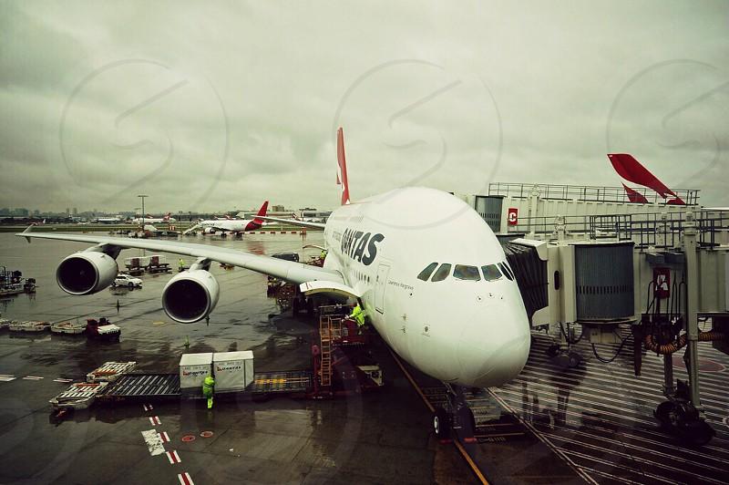 Qantas A380 preparing for it's next flight  photo
