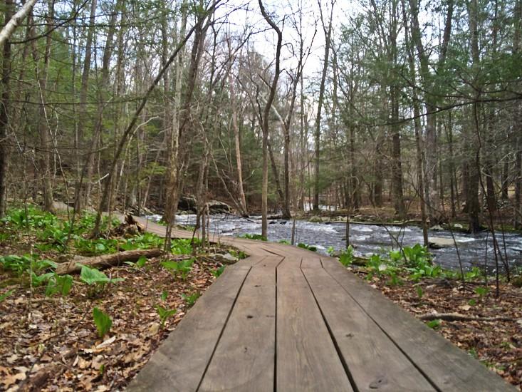 Southford Falls Trail photo