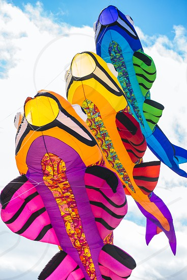 Kites in the shape of fish flying in the sky photo