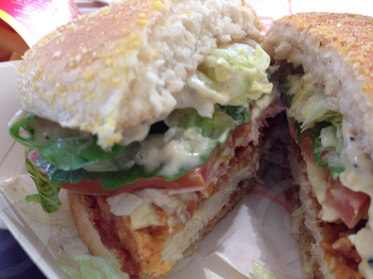 brown sandwich with mayonnaise photo