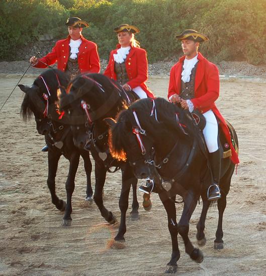 Spanish riding show on Menorca photo
