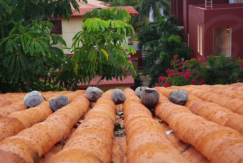 Cuba par dessus les toits photo