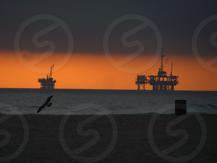 Huntington Beach CA Beach sand sunset oil rigs bird photo