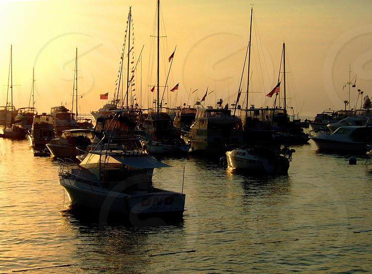 Sunrise Avalon Harbor Catalina Island CA photo