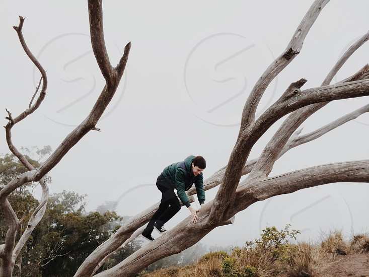 man wearing a black coat climbing a tree photo