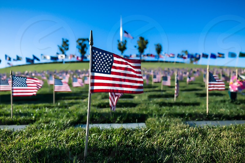 Closeup of small American Flag at Golden Gate National Cemetery on Memorial Day. photo
