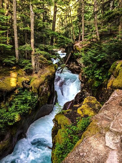 Glacier park stream photo