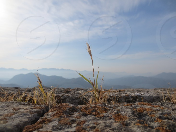 Great Wall of China grass erosion view photo