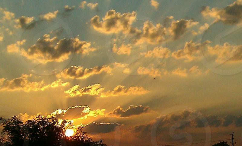Golden day photo
