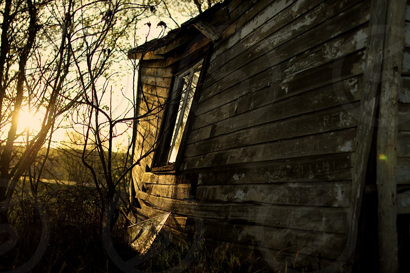 Old wood shed left to rot in the backwoods in the Midwest. photo