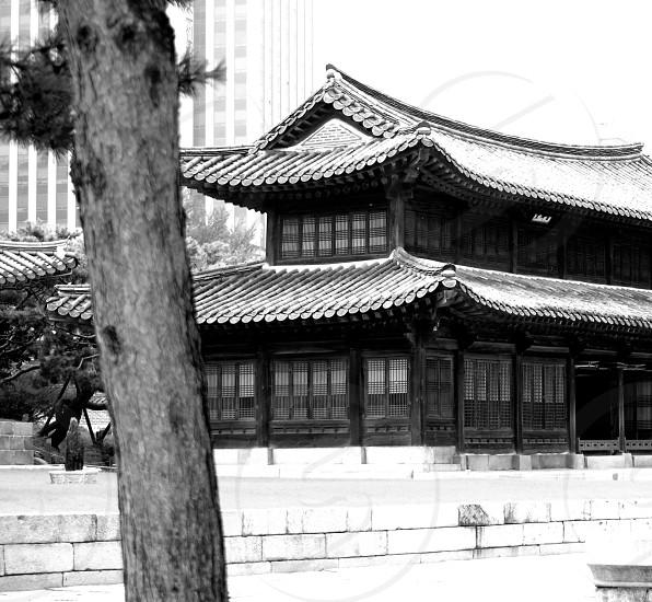 grayscale photo of 2-storey house photo