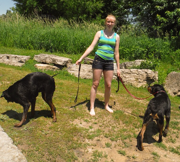 Teenage girl walking and playing with 2 rottwieller puppies  photo