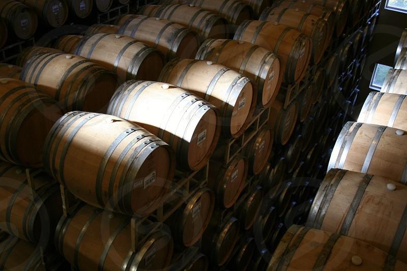 oak barrels in wine cellar photo