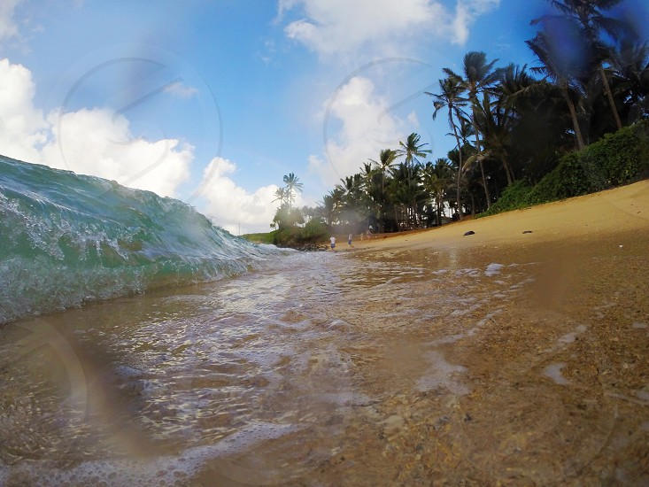 Hawaii water ocean beach photo