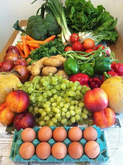Fresh from the local farmers market fruit vegetables eggs photo