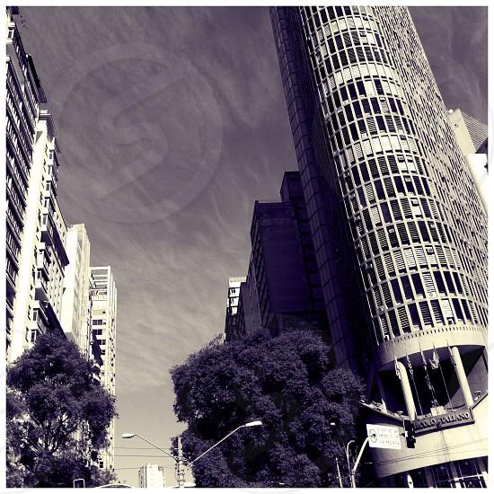 Sao Paulo downtown photo