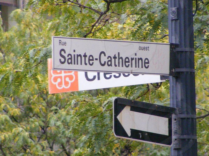 Catherine is my name :) photo