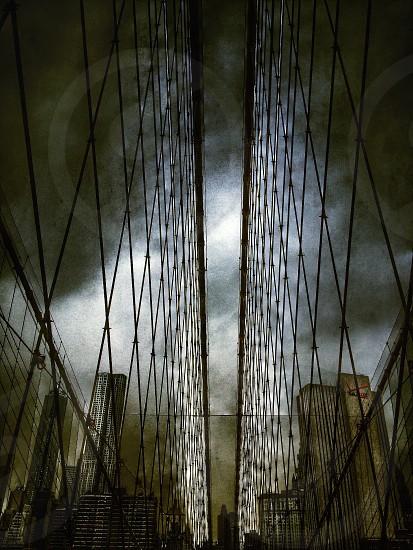 bridge cords city buildings photo