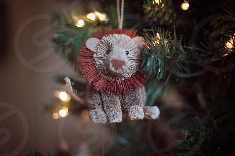 white and red bear christmas ornament photo