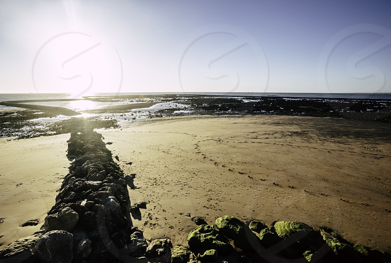 Rocks covered in mold exposed to the low tide on the beach of Sanlucar de Barrameda photo