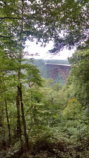 New River Gorge in West Virginia photo