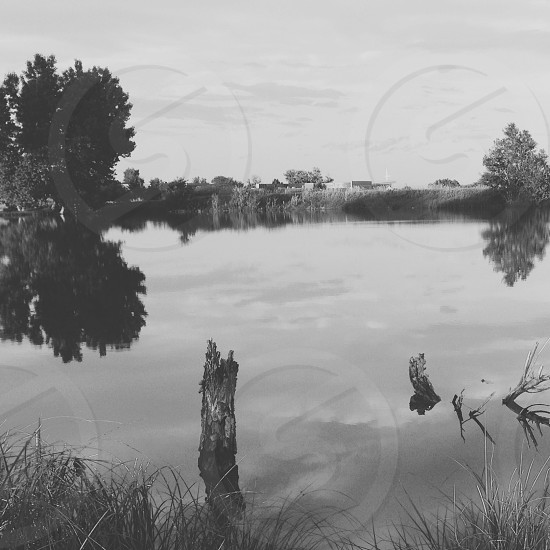 Landscape black and white nature water pond photo