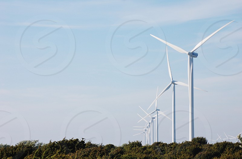 windmills beside green trees during daytime photo