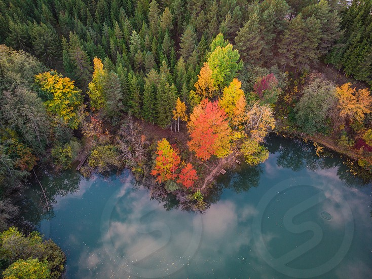 Lake shore at national park in autumn photo